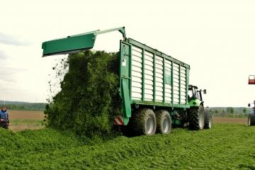 Gras-Häckseln-24