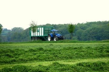 Gras-Häckseln-7